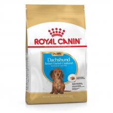 Купить Сухой корм Royal Canin (Роял Канин) 1,5 кг DACHSHUND PUPPY для щенков такс до 10 мес Фото 1 недорого с доставкой по Украине в интернет-магазине Майзоомаг
