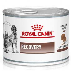 Влажный корм для кошек и собак в период реабилитации Royal Canin Recovery 195 г