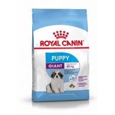 Купить Сухой корм Royal Canin (Роял Канин) 1 кг, для собак от 2 до 8 мес., Giant Puppy Фото 1 недорого с доставкой по Украине в интернет-магазине Майзоомаг