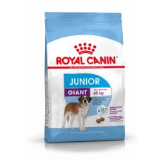 ROYAL CANIN (РОЯЛ КАНИН) GIANT JUNIOR 3,5 кг (от 8 до 18-24 мес.)