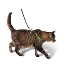Прогулки кошки: в городе или на балконе?