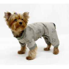 Одежда для собак в осенне-зимний сезон
