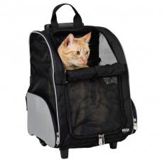 Какие документы нужны для перевозки кошек