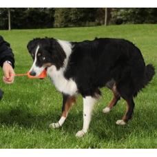 Купить TRIXIE 3230 DOG ACTIVITY FUN MOT  9 см Фото 1 недорого с доставкой по Украине в интернет-магазине Майзоомаг