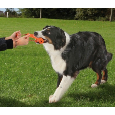Купить TRIXIE 3232 DOG ACTIVITY LONG-MOT  20 см Фото 1 недорого с доставкой по Украине в интернет-магазине Майзоомаг