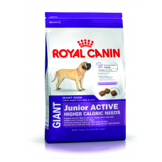 ROYAL CANIN (РОЯЛ КАНИН) GIANT JUNIOR ACTIVE 15 кг (от 8 до 18-24 мес.)
