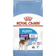 Купить Сухой корм Royal Canin (Роял Канин) 15 кг, для щенков крупных пород (от 2 до 8 мес), Giant Puppy Фото 1 недорого с доставкой по Украине в интернет-магазине Майзоомаг