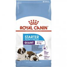 Купить Сухой корм Royal Canin (Роял Канин) 4 кг, первый прикорм для щенков и для беременных и кормящих сук, Giant Starter Фото 1 недорого с доставкой по Украине в интернет-магазине Майзоомаг