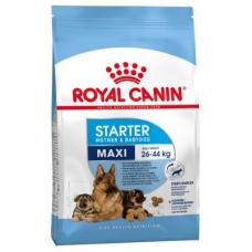 Сухой корм Royal Canin (Роял Канин) 1 кг, для беременных и кормящих сук, первый прикорм для щенков, maxi starter